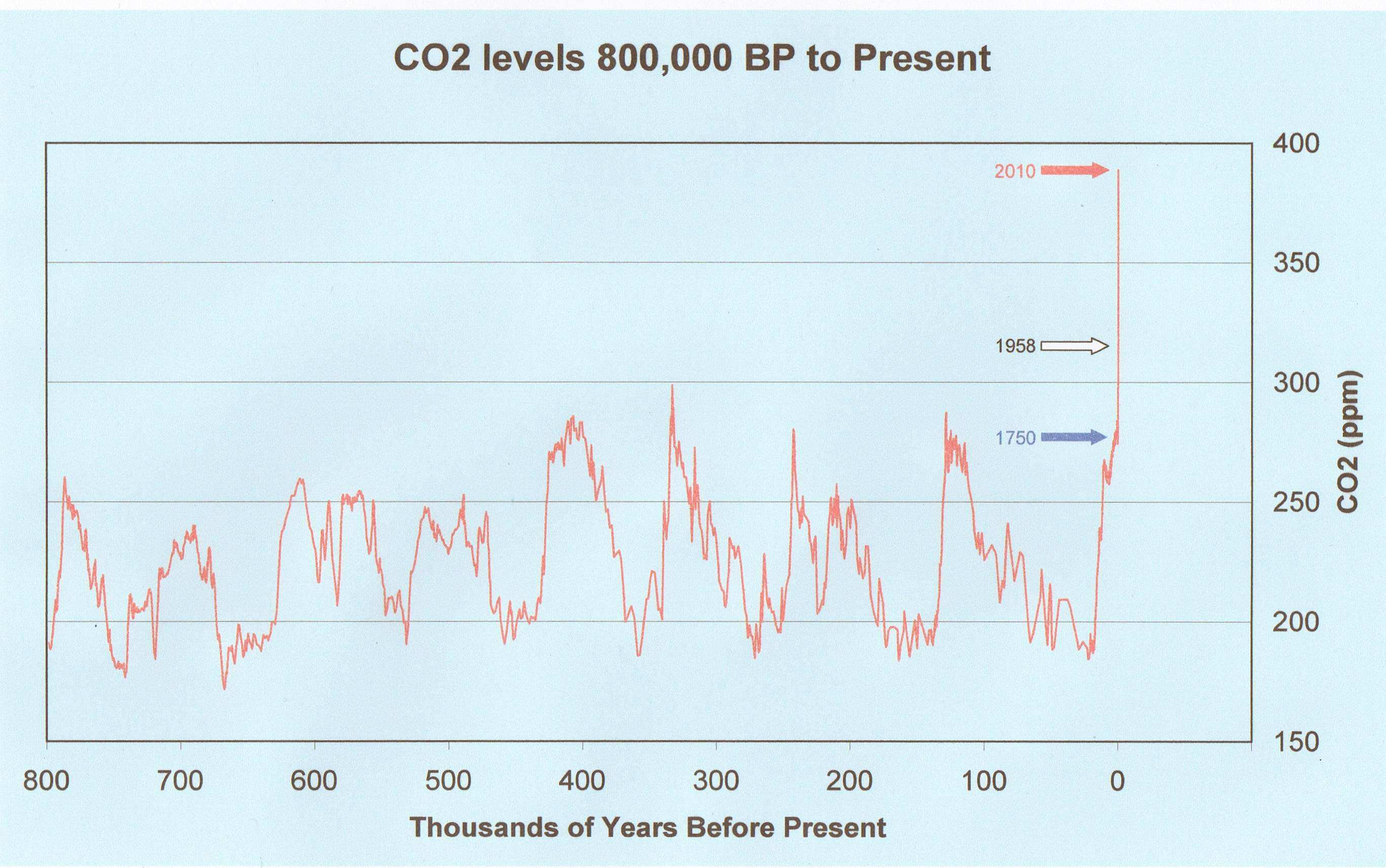 How much co2 lab